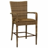 Whitecraft by Woodard All -Weather Wicker Padded Seat Bar Stool with Arms