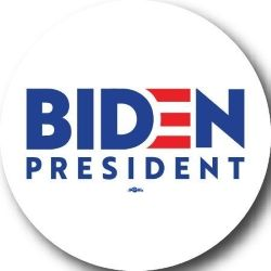 Biden 2020 Campaign Button- Available in 3 sizes!