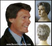 Charles  Synthetic Men's Wig