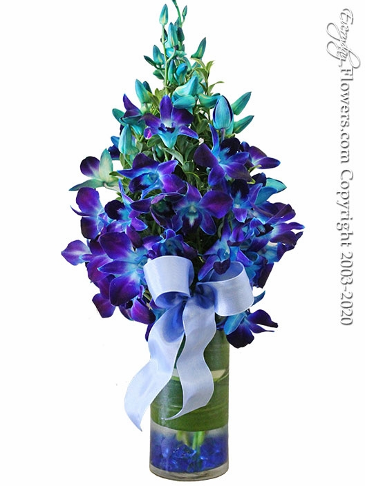 """Blue Orchids Monet <p style=""""color:red;"""">Sold Out</p>"""