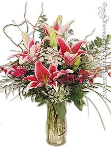 Fountain Valley Regional Hospital and Medical Center Delivery Service by Everyday Flowers