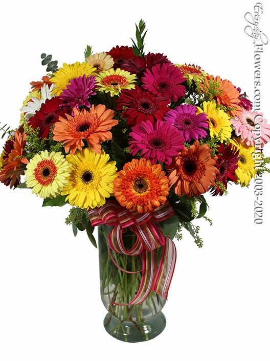 "Gerbera Daisy Pastures <p style=""color:red;"">Sold Out</p>"