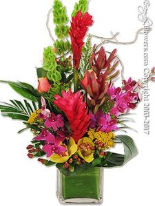 Hoag Hospital Newport Beach Delviery Service by Everyday Flowers