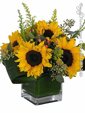 """Just Sunflowers<p style=""""color:red;"""">Can Be Upgraded For More Sunflowers</p>"""