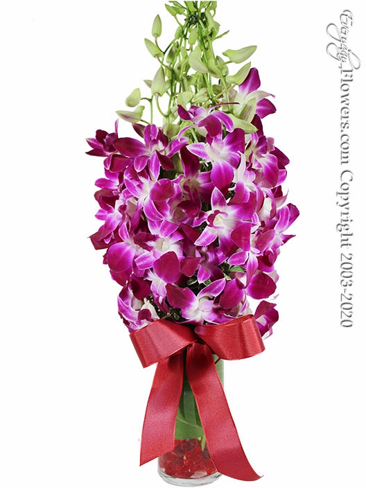"""Monet Orchids For Valentines Day <p style=""""color:red;"""">Sold Out</p>"""