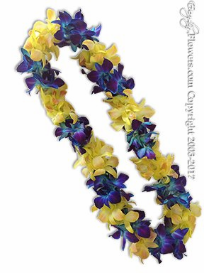 Blue And Yellow Orchid Lei
