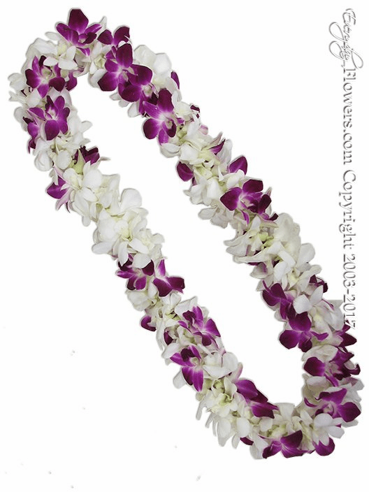 White And Purple Orchid Lei