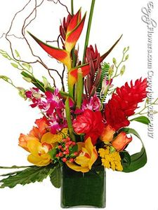 Orange Florist Everyday Flowers