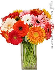 Placentia Linda Hospital Flower Delivery by Everyday Flowers