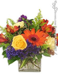 St Joseph Hospital Flower Delivery by Everyday Flowers