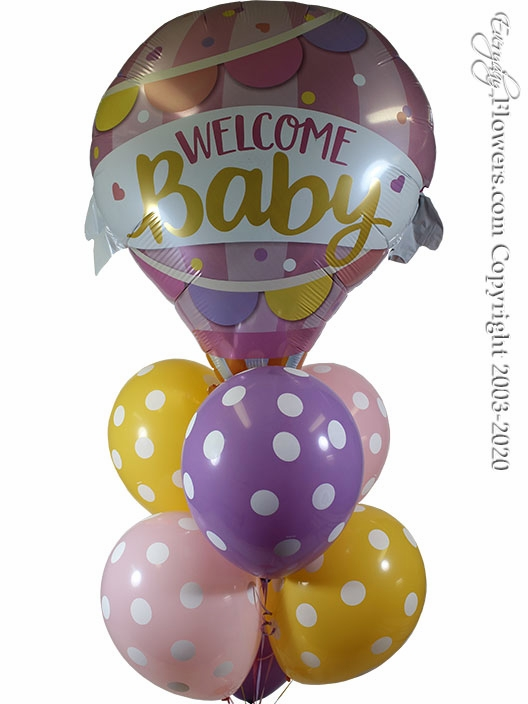 Welcome Baby Girl Hot Air Balloons