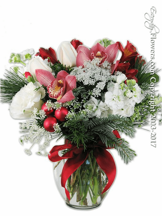 Christmas Blooms