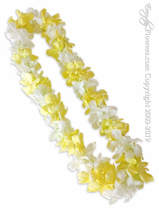 Yellow And White Orchid Lei
