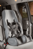 Soft-Touch Booster Car Seat - Large