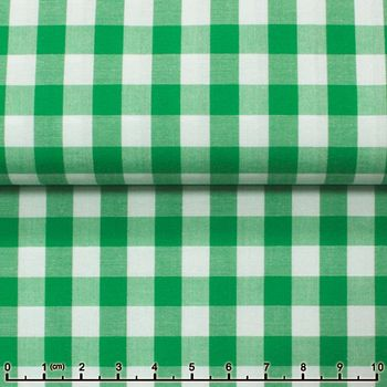 Light Green Gingham Spread Collar Shirt -Special order