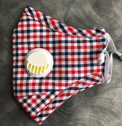 Red White Blue Gingham Mask