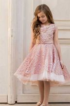 Joyfolie Jacqueline Dress in Blush Cameo (Size 2)