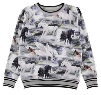 Molo Raewyn Mystical Unicorn Top (4 & 5)