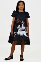 Wild Horses Elegance Dress (Size 4/5)