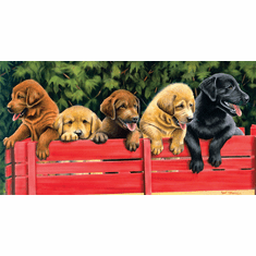 All Aboard - 500pc Jigsaw Puzzle by SunsOut