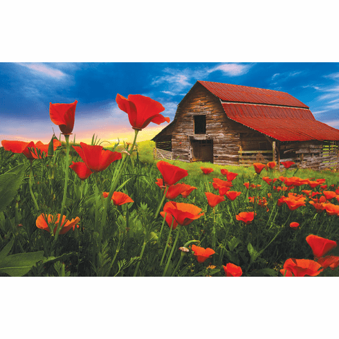 Barn in Poppies - 550pc Jigsaw Puzzle by SunsOut