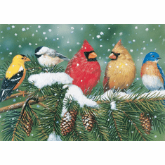 Cardinals & Friends - 550pc Jigsaw Puzzle By White Mountain (discon)