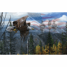 May Freedom Ring Forever - 550pc Jigsaw Puzzle By Sunsout