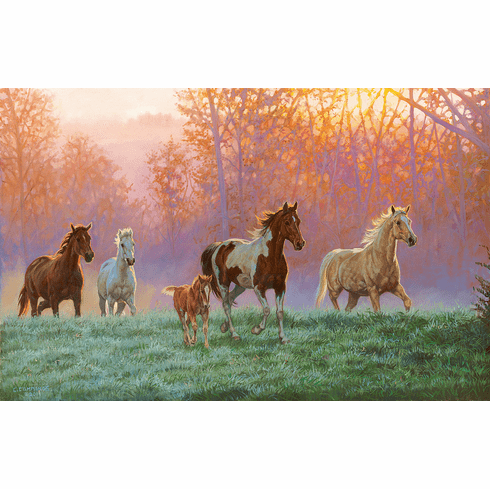 Morning Sun - 1000pc Jigsaw Puzzle by SunsOut