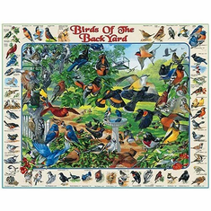 White Mountain Puzzles Birds of the Backyard - 1000 Piece Jigsaw Puzzle