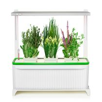 Indoor Garden w/ Adjustable LED Grow Light for Herbs, Flowers and Vegetables