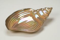 "Conch Shell 11.5"" Gold Luster Plate"