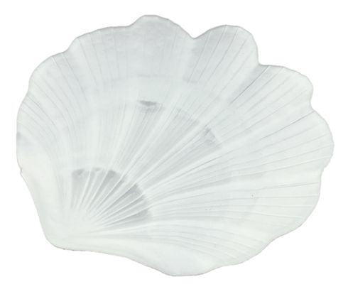 """Scallop Shell 8"""" White Plate Set of 2"""