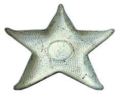 "Starfish 10"" Silver Plate"