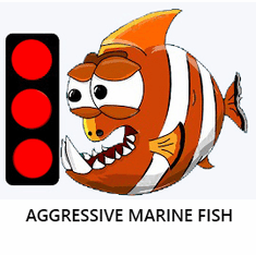 Marine Aggressive Fish