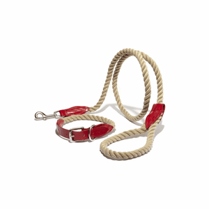 Leather and Rope Leash