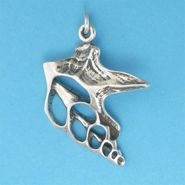 Pelican Foot Shell Pendant