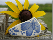 Pottery & Sunflower Photo