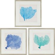 Sea Fan II S/3 Wall Art