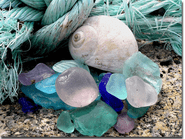Sea Glass and Shell Photo