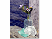 Sea Glass on a Dock Photo