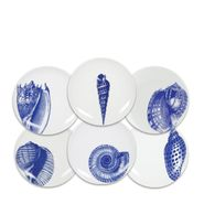 Shells Blue Canapes - Mixed S/6
