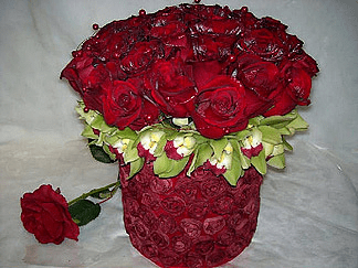 Contemporary Rose Dozen Compact