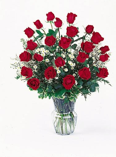 T029-03 Red Roses