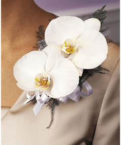 T090-03 Double Phalaenopsis Corsage