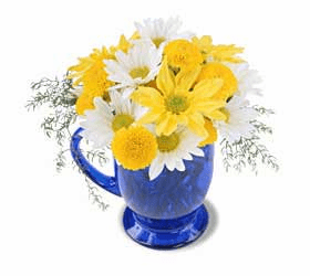 The FTD® Cup Of Wonder™ Bouquet