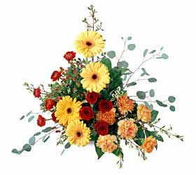 The FTD® Petals & Branches™ Arrangement