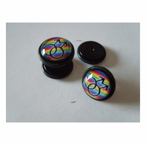 Male Symbol Rainbow Faux Plug Earrings