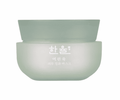 HANYUL PURE ARTEMISIA PURIFYING MASK