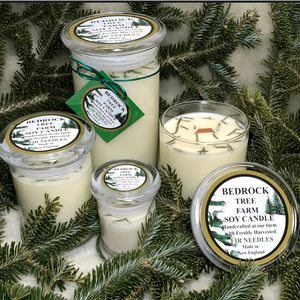 """JANICE IN MASS - """"My expression of gratitude and appreciation... I ordered candles for the first time from you, and received them practically the next day! When I open the box, I was overwhelmed, delighted! I never expected such a wonderful experience opening a box! The cardboard linguine topped by a fir branch mingled with the fragrance of the candles was exceptional! My enthusiasm has already spread to all of my friends, family and associates! One thousand thank you's, for for providing both an experience and product that lift the spirit, during these difficult times! With sincere appreciation for the quality and attention to detail, to both you and your crew! The highest of praise!"""""""