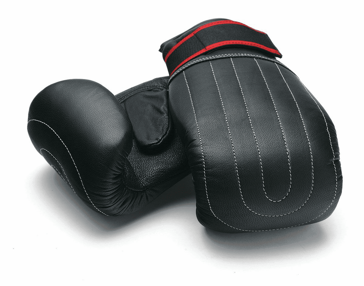 Leather Bag Glove